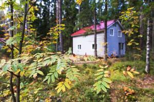Eco park Korkino Lake
