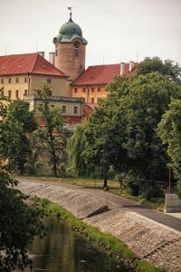 Penzion Dobré Časy, Bed & Breakfasts  Poděbrady - big - 6