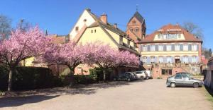 Hôtel Du Herrenstein, Hotely  Neuwiller-lès-Saverne - big - 1
