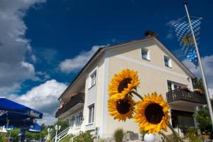 Landgasthof Am Sonnenhang - Leuchtenberg