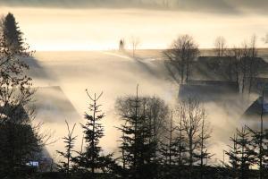 Pension Lebers Schinken-Alm, Guest houses  Winterberg - big - 12