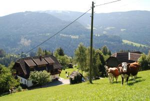 Ferienwohnung Lahnerhof