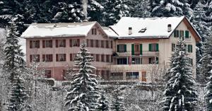 BnB Hôtel des Bains - Accommodation - L'Etivaz