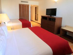 Holiday Inn Resort Los Cabos All Inclusive, Resort  San José del Cabo - big - 4