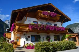 Haus Bergkristall - Apartment - Leutasch