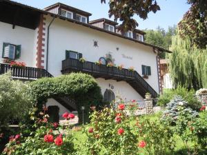 Naturhotel Wieserhof - Longostagno