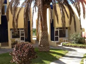 Bungalow Center Las Americas, Costa Adeje - Tenerife