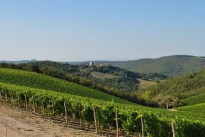 Castello di Spaltenna (33 of 93)
