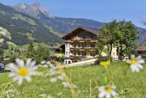Dorfgastein Hotels