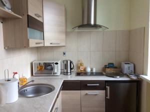 Talsu Street Apartment - Liepene