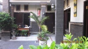 Hostels e Albergues - Hostel Bali Semesta