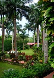 Hacienda Chichen (36 of 59)
