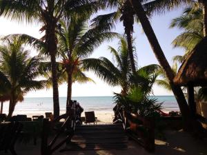 Beachfront Hotel La Palapa - Adults Only, Hotely  Ostrov Holbox - big - 37