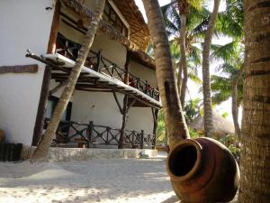 Beachfront Hotel La Palapa - Adults Only, Hotely  Ostrov Holbox - big - 36