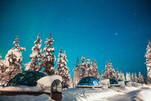 Kakslauttanen Arctic Resort (8 of 77)