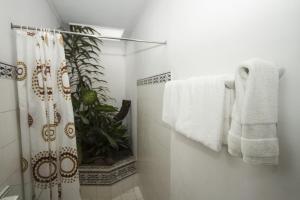 Hotel 1492, Hotels  San José - big - 7