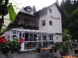 Hotel Elfenmühle, Penzióny  Bad Bertrich - big - 66