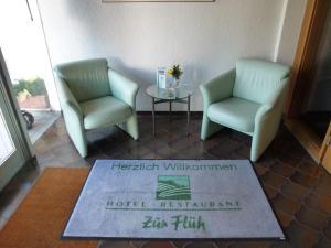 Hotel zur Flüh, Penzióny  Bad Säckingen - big - 15