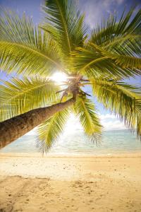 Tamanu Beach Resort (12 of 78)
