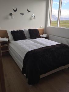 Lónið Apartments - Höfn