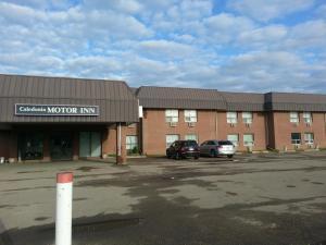Caledonia Motor Inn, Hotely - Viking