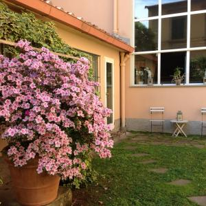 Casa Schlatter (16 of 16)