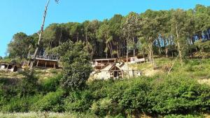 Dreamland Eco Hostel, Hostely  Bālāju - big - 14