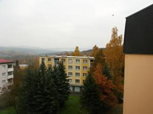 Apartment Gagarinova, Апартаменты  Карловы Вары - big - 4