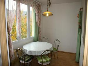 Apartment Gagarinova, Апартаменты  Карловы Вары - big - 15