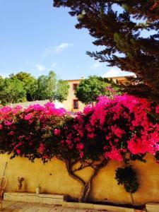obrázek - Casa Perla Relleu