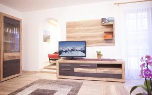 Alp Chalet Appartement, Ferienwohnungen  Kappl - big - 44