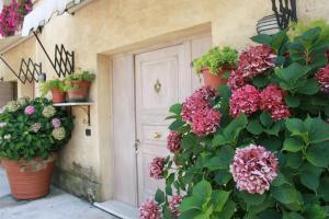 Auberges de jeunesse - La Marignana
