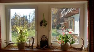 Haus Panoramablick, Pensionen  Lofer - big - 48
