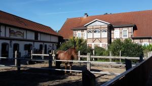 Ferienhof Hanum - Hanum