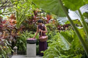 Mandarin Oriental Bangkok (24 of 66)