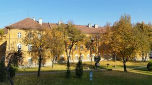 Hotel Central, Hotely  Temešvár - big - 63