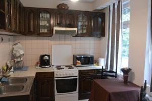 Villa Elena, Holiday homes  Borovets - big - 4