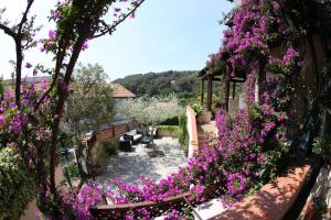 Hotel Galli, Hotels  Campo nell'Elba - big - 57