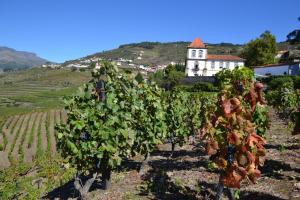 Casa das Torres de Oliveira, Pensionen  Mesão Frio - big - 29
