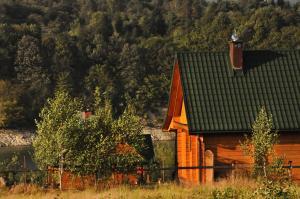 Domki nad Soliną