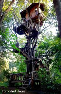 Rabeang Pasak Tree House - Ban Pang Ai