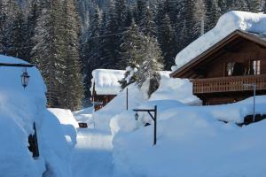 Alpin Park, Panziók  Sappada - big - 103
