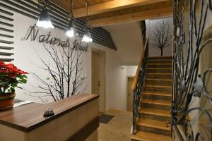 Villa Natural Wood, Ferienwohnungen  Zlatibor - big - 45