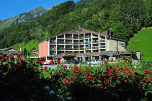 Hotel Sardona, Hotely  Elm - big - 1