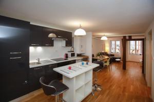 Appartements Des 2 Têtes - Colmar