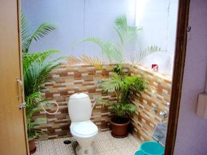 Blue Lagoon Resort Goa, Курортные отели  Кола - big - 154