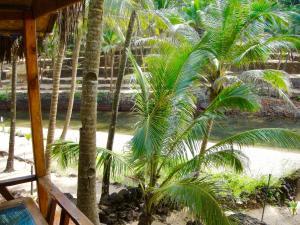 Blue Lagoon Resort Goa, Курортные отели  Кола - big - 157