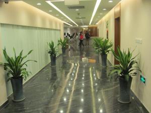 Beijing New World CBD Apartment, Ferienwohnungen  Peking - big - 55