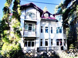 Villa Elena, Holiday homes  Borovets - big - 15