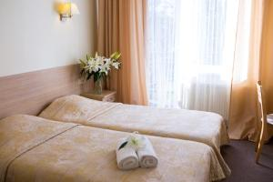 Hotel Arkadia - Brizule